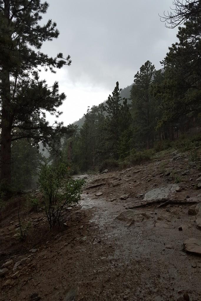 Lily Mountain, Colorado